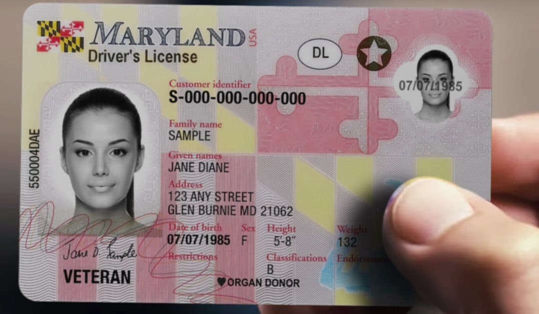 Maryland Provisional License: Requirements, Restrictions, and More