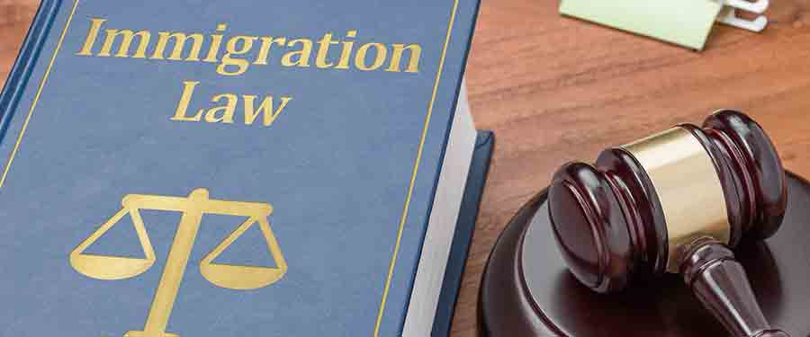 Will immigration laws change